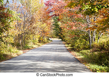 Quiet country lane in fall