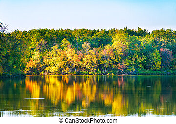 Quiet lake in autumn forest, among the autumn, yellowing trees