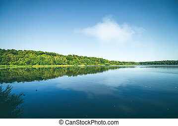 Quiet lake surrounded by a green forest
