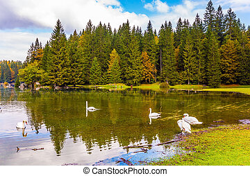 Quiet picturesque lake in Northern Italy - The lake in...