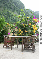 Quiet country place with beautiful garden, surrounded by mountains