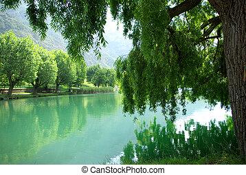 quiet lake in spring