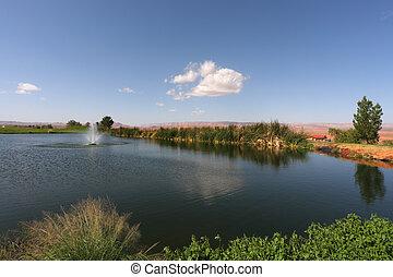 Quiet pond  in the golf club