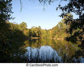 Quiet Pond - This is a shot of a still pond framed by some ...