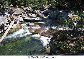 Quiet river in Queensland