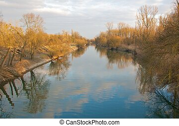 Quiet river with trees and lumber in the famous Rheinauen nature reserve at the River Rhine, Karlsruhe, Germany