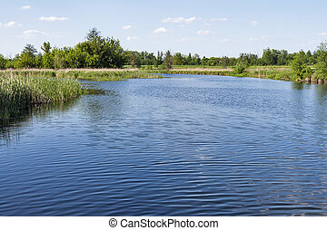 quiet Ros river at summer