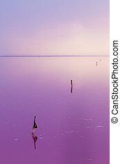 Quiet scene of pink water of salt lake.