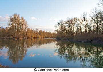 Quiet waters with strong reflections in the famous Rheinauen nature reserve at the River Rhine, Karlsruhe, Germany