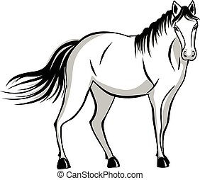 Quietly standing horse. black and gray color