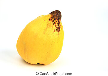 Quince (Cydonia oblonga) - Ripe quince fruit isolated ...