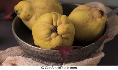 Quince fruits close-up