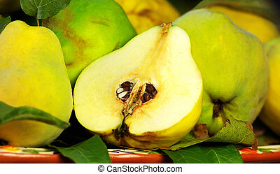 quince slice on a green background