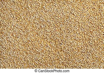 quinoa, crudo, fondo