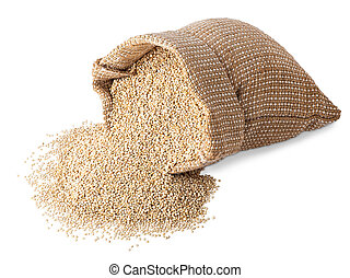 quinoa seeds in sack