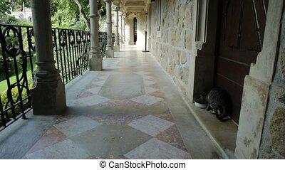 Quinta da Regaleira - Pov walking in the veranda of...