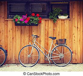 quintal, bicicleta, geraniums