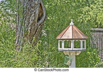 quintal, birdhouse