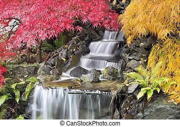 quintal, cachoeira, com, maple japonês, árvores