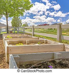 quintal, com, seedling, caixas, e, um, visão cênica