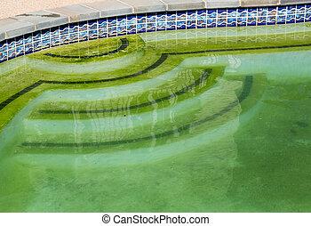 quintal, imundo, pátio, piscina, natação