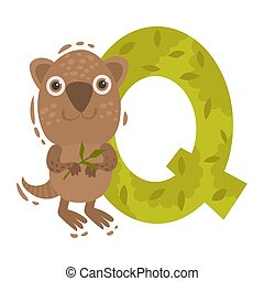 Quokka and the letter Q. Vector illustration on a white background.