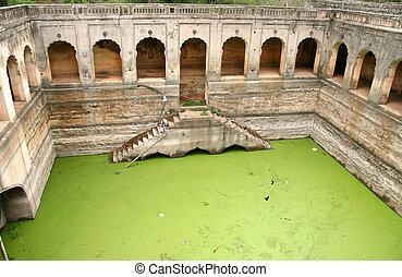 Green moss water in the Historic Quli Qutb shahi tombs