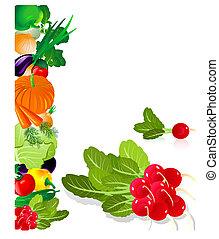 rábano, vegetales