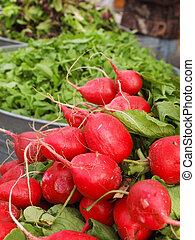 rábanos, mercado, granjero