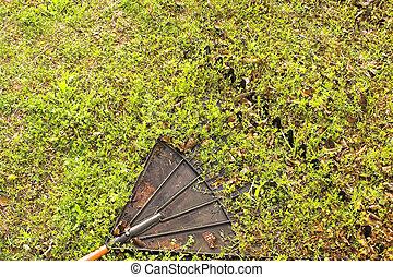 râteau, herbe, jardin