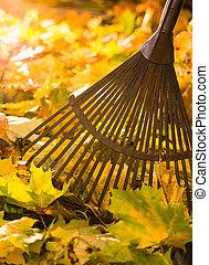 râteau, pousse feuilles