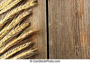 råg, spikelets, över, trä, bakgrund