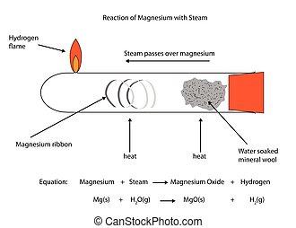 réaction, pleinement, illustration, étiqueté, vapeur, magnésium