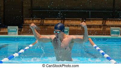 réagir, enjôleur, nageur, course, mâle, 4k, après