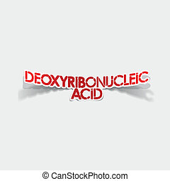 réaliste, element:, acide, conception, deoxyribonucleic