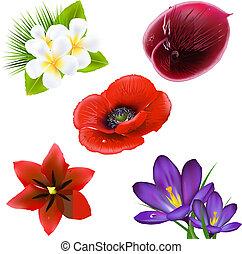 réaliste, ensemble, fleurs