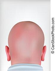 réaliste, tête, chauve