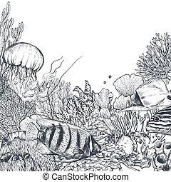 récif, exotique, vecteur, fond, corail, poissons, monochrome