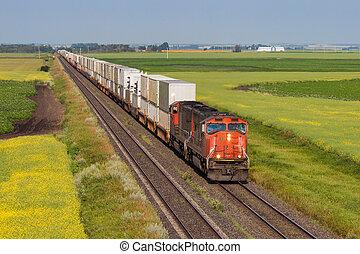 récipient, train, travers, vert, et, jaune, prairie