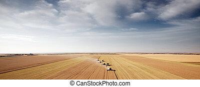 récolte, aérien, paysage