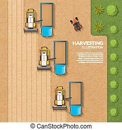 récolte, sommet, illustration, vue