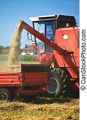 récolte, tracteur, blé, combiner