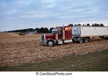 récoltes, attente, transport, caravane, semi