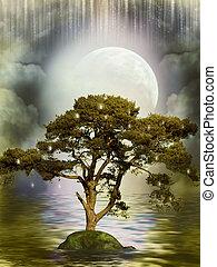 réflexion arbre