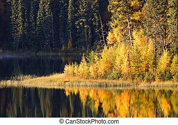 réflexion eau, à, jade, lac, dans, nord, saskatchewan