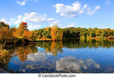 réflexions, automne