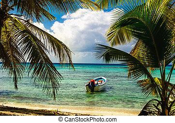 république, mer, canot automobile, amarré, paume, blanc, côte, arbres, exotique, dominicain, beau, entrer, surprenant