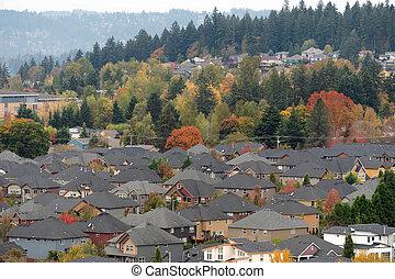 résidentiel, suburbain, densely, voisinage, peuplé
