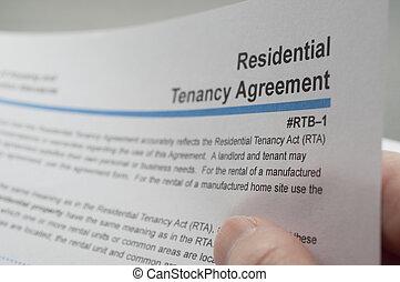 résidentiel, tenancy, lecture, accord