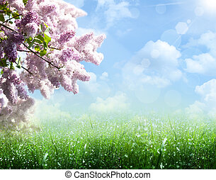 résumé, été, et, printemps, arrière-plans, à, lilas, arbre